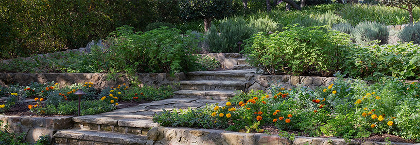 paysage_landscaping_about